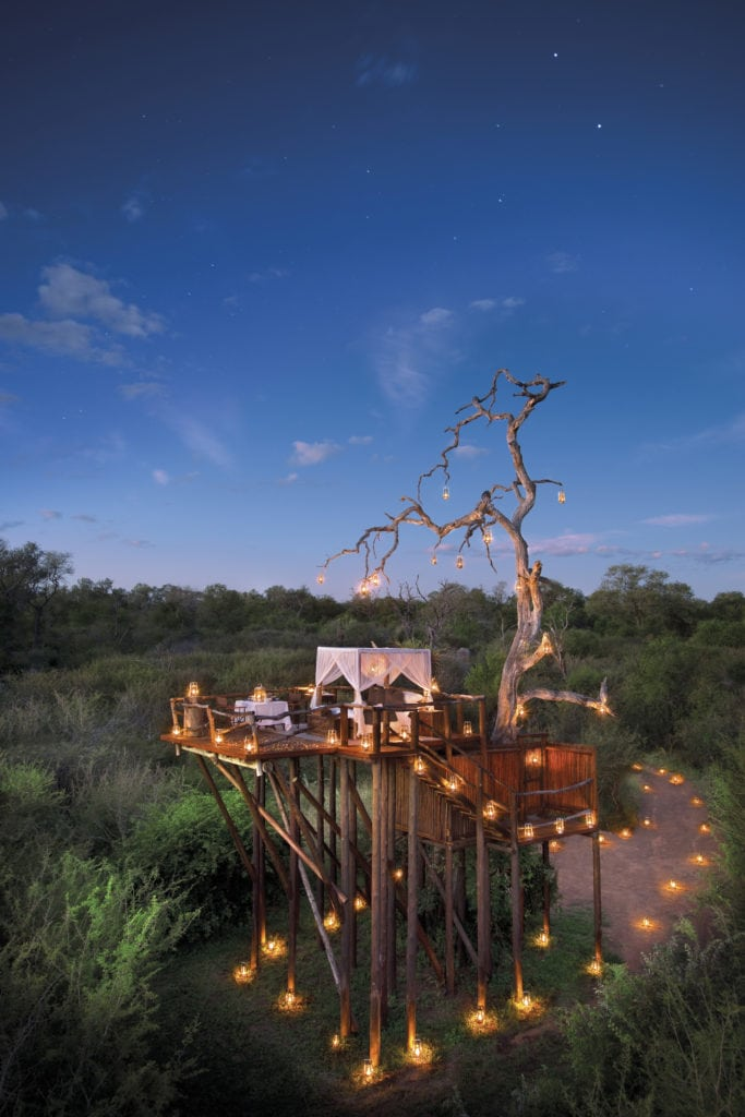 A magical treetop eyrie is the ideal spot from which to observe the passing African wildlife