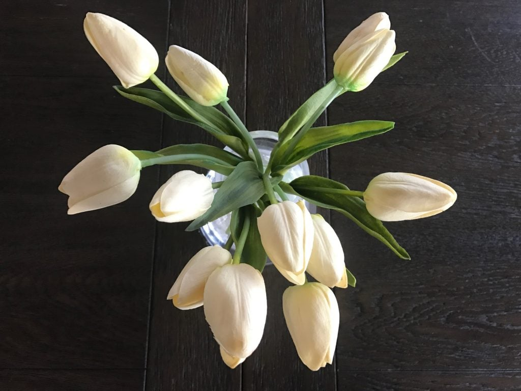 tulips, close up, white flowers
